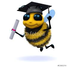 graduate bee!!