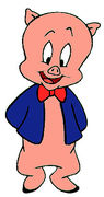 PORKY PIG EXPLAINS EVOLUTION